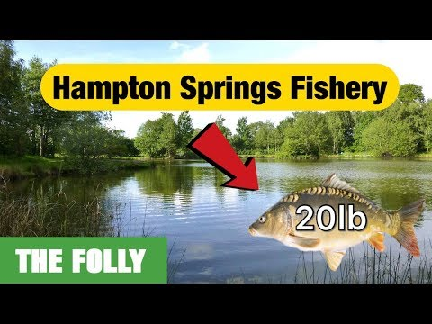 Hampton Springs Fisheries - The Folly