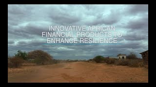 Two Innovative Financial Products Enhancing Resilience in Rural Kenya: Mercy Corps and IFPRI