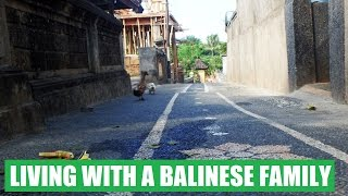 WWOOFING: LIVING WITH A BALINESE FAMILY