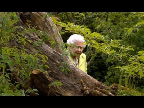 2019 RHS Chelsea Flower Show  Tuesday Royal Visit