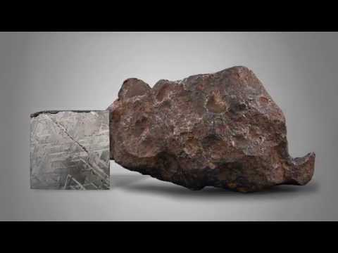 Gibeon Meteorite and Slab from M.S. Rau Antiques