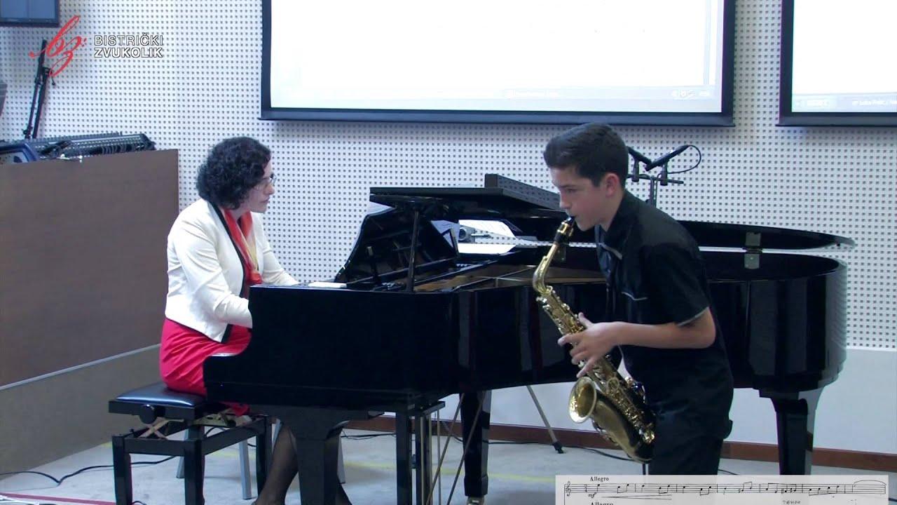 Felix Antonini: Divertissement Tzigane - Luka Relić, alt saksofon / Bistrički ZVUKOLIK 2014.