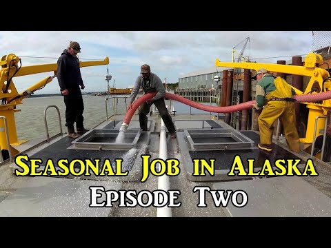 Seasonal Job in Alaska - Episode Two