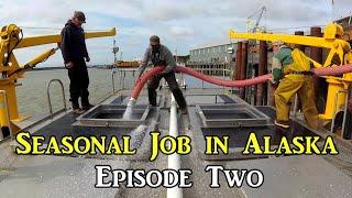 Seasonal Job in Alaska - Episode Two