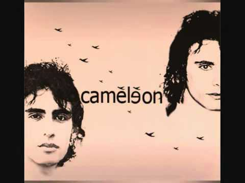 New Algerian Song  Cameleon  Wallah