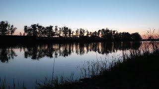 Рыбалка на Карася. Ловля крупного карася на вечерней зорьки. Рыбалка на реке Иргиз 2018