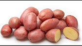 Картофель сорта Джелли , Метеор , Галла , Ред Скарлетт - YouTube