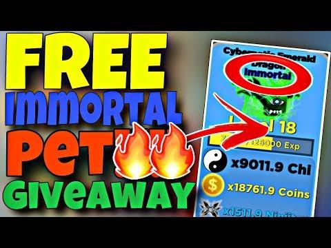 ⚡ Ninja Legends BEST RANK | FREE IMMORTAL PET GIVEAWAY! ROBLOX LIVE 🔴