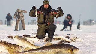 РЫБАЛКА НА КОМБАЙНЫ Рыба Атаковала МОИ САМОДЕЛКИ Зимняя рыбалка на блесна с глубины