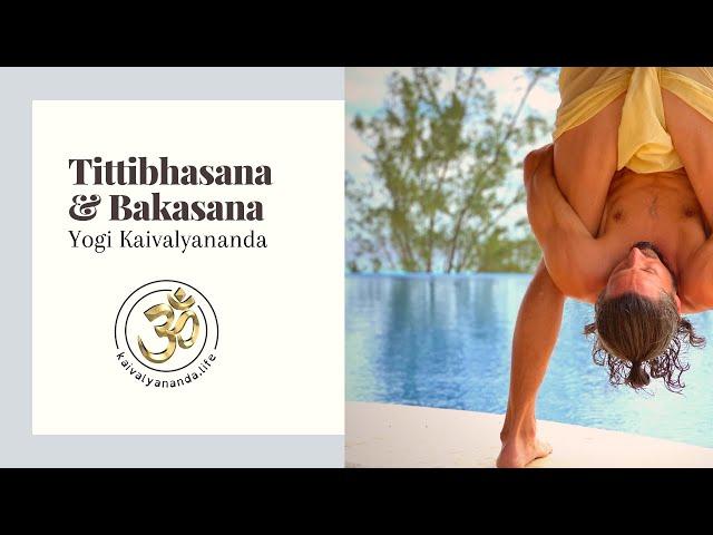 Tittibhasana & Bakasana with Yogi Kaivalyananda