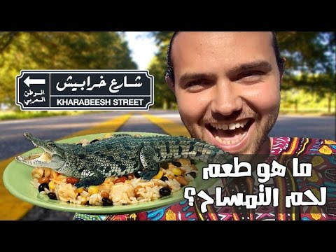 #شارع_خرابيش: مصطفى أكل لحم تماسيح؟!!