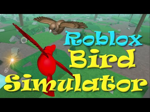 ROBLOX Bird Simulator with Chad