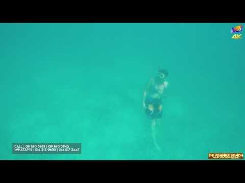 Turtle Point Snorkeling Site Perhentian Island 4k GoPro