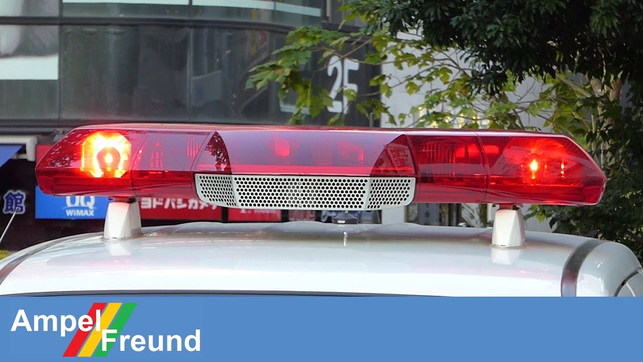 Patlite axs 12hdfq japanese police lightbar youtube patlite axs 12hdfq japanese police lightbar mozeypictures Image collections