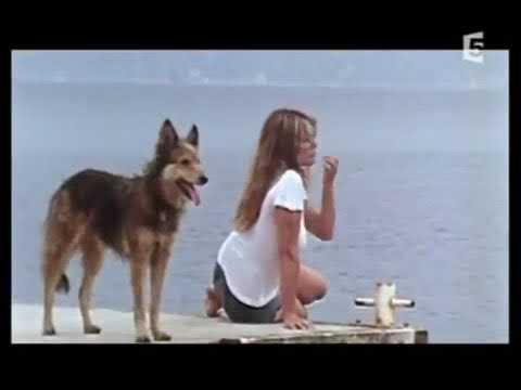 Rétrospective des combats de Brigitte Bardot pour les animaux (1962 à 2004)
