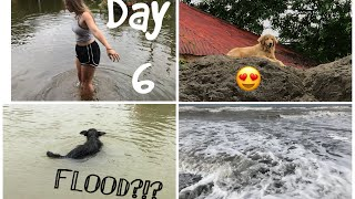 The Whole Town Flooded - Costa Rica Travel Vlog Day 6