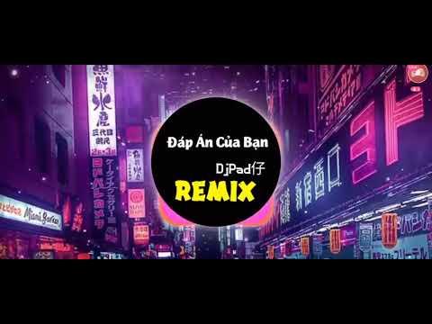 Nhạc Đáp án của bạn remix nhạc hay nhất năm 2021 (ĐjPa proghouse mix. )
