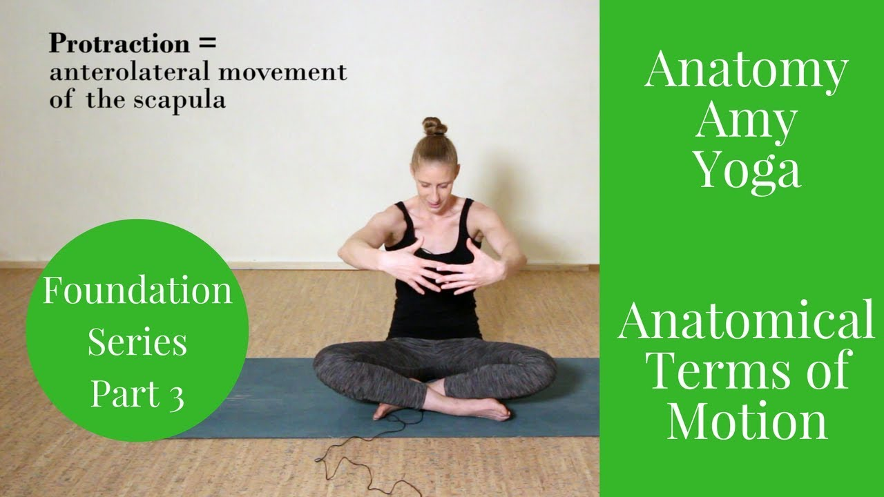 Anatomical Terms Of Motion Foundation Anatomy Amy Yoga Youtube