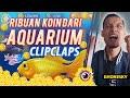 - Cara Dapat Ribuan Koin dari Aquarium ClipClaps