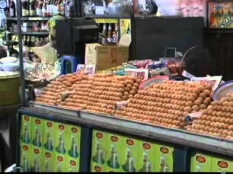 การเลี้ยงไก่ - การเลี้ยงไก่ไข่ 1
