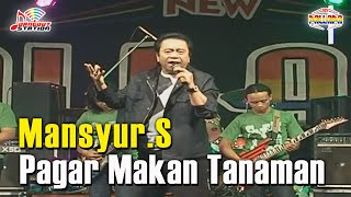 Mansyur S - Pagar Makan Tanaman (Official Music Video)