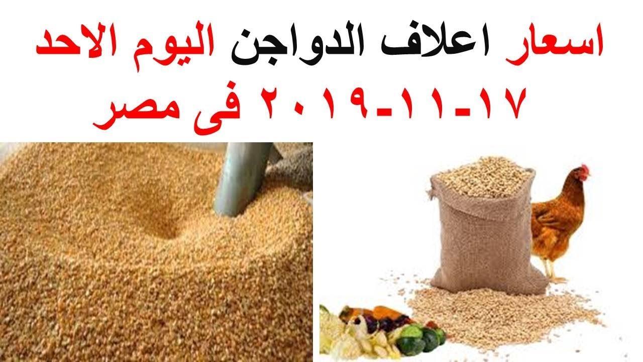 اسعار اعلاف الدواجن اليوم الاحد 17-11-2019 فى مصر
