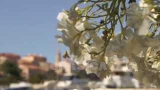 Frankrijk, Corsica, calvi