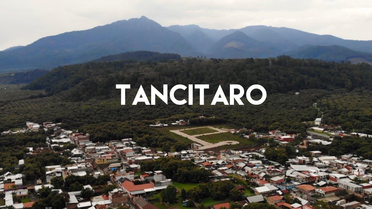 ¿De dónde viene el aguacate que comemos?  - Tancítaro, Michoacán, la capital mundial del aguacate.