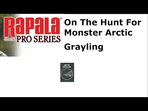 Rapala Pro Series Fishing : On The Hunt For Monster Arctic Grayling
