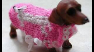 Little Dachshunds With Pretty Clothes Part 1 - Annelies De Kort
