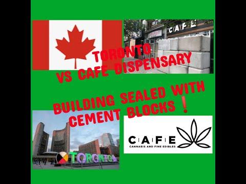 Repeat Toronto vs Cafe Canabis Dispensary by Jay Coffee Talk