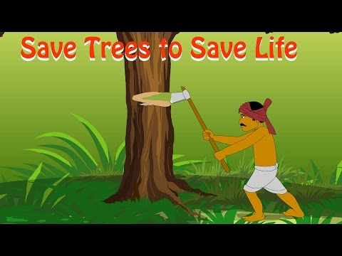 """important to save forest Many groups oppose rainforest destruction because of the important role rainforests play in our world scientists sometimes call rainforests the """"lungs of earth the millions and millions of trees in earth's rainforests absorb tremendous amounts of carbon dioxide from the atmosphere and produce much of the oxygen humans and animals depend upon."""