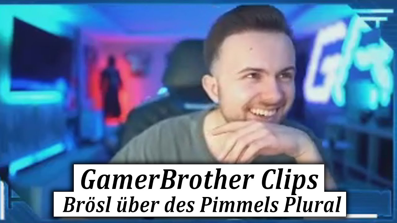 Was ist eigentlich der Plural von PIMMEL? 😂🤣 | GamerBrother Clips