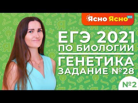ЕГЭ по биологии 2021 | Генетика | Задание №28 ЕГЭ по биологии, 2-ая часть | Ясно Ясно ЕГЭ