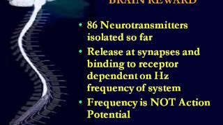 Become More Intelligent - Healthy Brain Secrets - SUPER BRAIN - Introduction