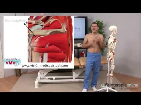 Como relajar el músculo supraespinoso con un auto-masaje