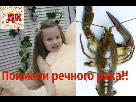 Работа няни в Нижнем Новгороде найти без посредников