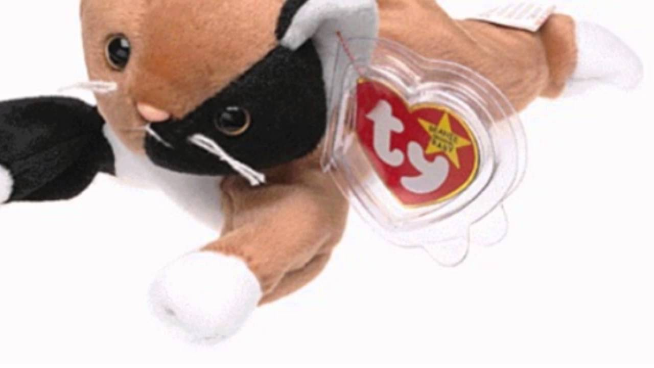 27453981386 Ty Beanie Babies - Chip The Cat (Toy) - YouTube
