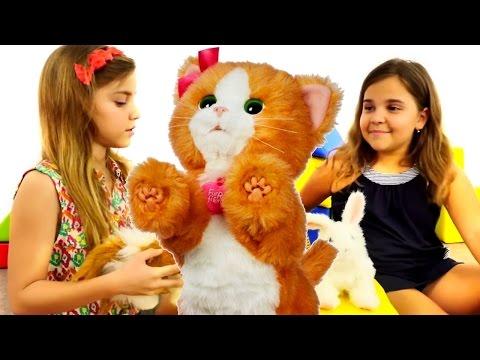oyuncak kedi ve tavşanla oynuyoruz. evcil hayvanlar oyunları  kız yıldız