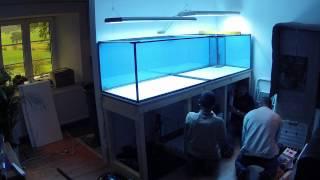 Aquarienbau im Zeitraffer
