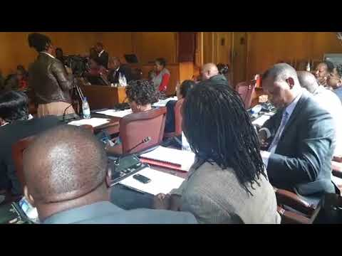 Full exclusive Wicknell Chivhayo oral evidence before parly on the Gwanda Solar scam