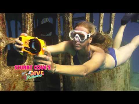 BE FREE with PADI Freediving at Stuart Cove's Freedive Bahamas!