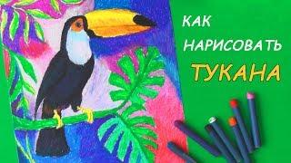 Как нарисовать птицу ТУКАНА пастелью | Уроки рисования
