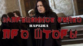Северус Снейп   УЧИТЕЛЬ ГОДА Переозвучка
