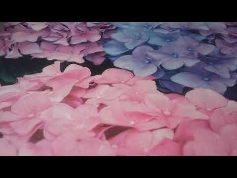 Perfect Storm Kids Power Flower II BOOT Black//Pink 13