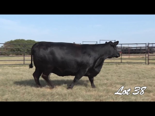 Pollard Farms Lot 38