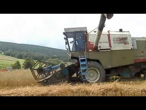 Пшеница: покупка и продажа, цены - торговая площадка