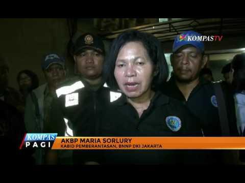 "BNN Jakarta Tangkap Mahasiswa Pengguna ""Blue Safir"""