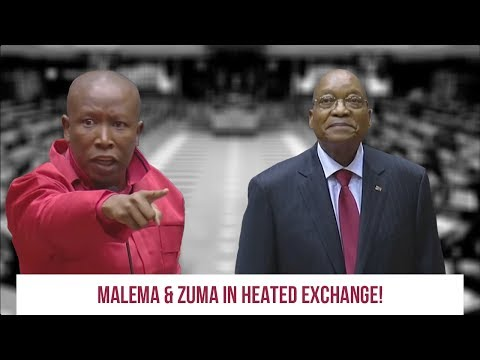 WATCH Malema & Honourable Baba ka Duduzane in a heated exchange!