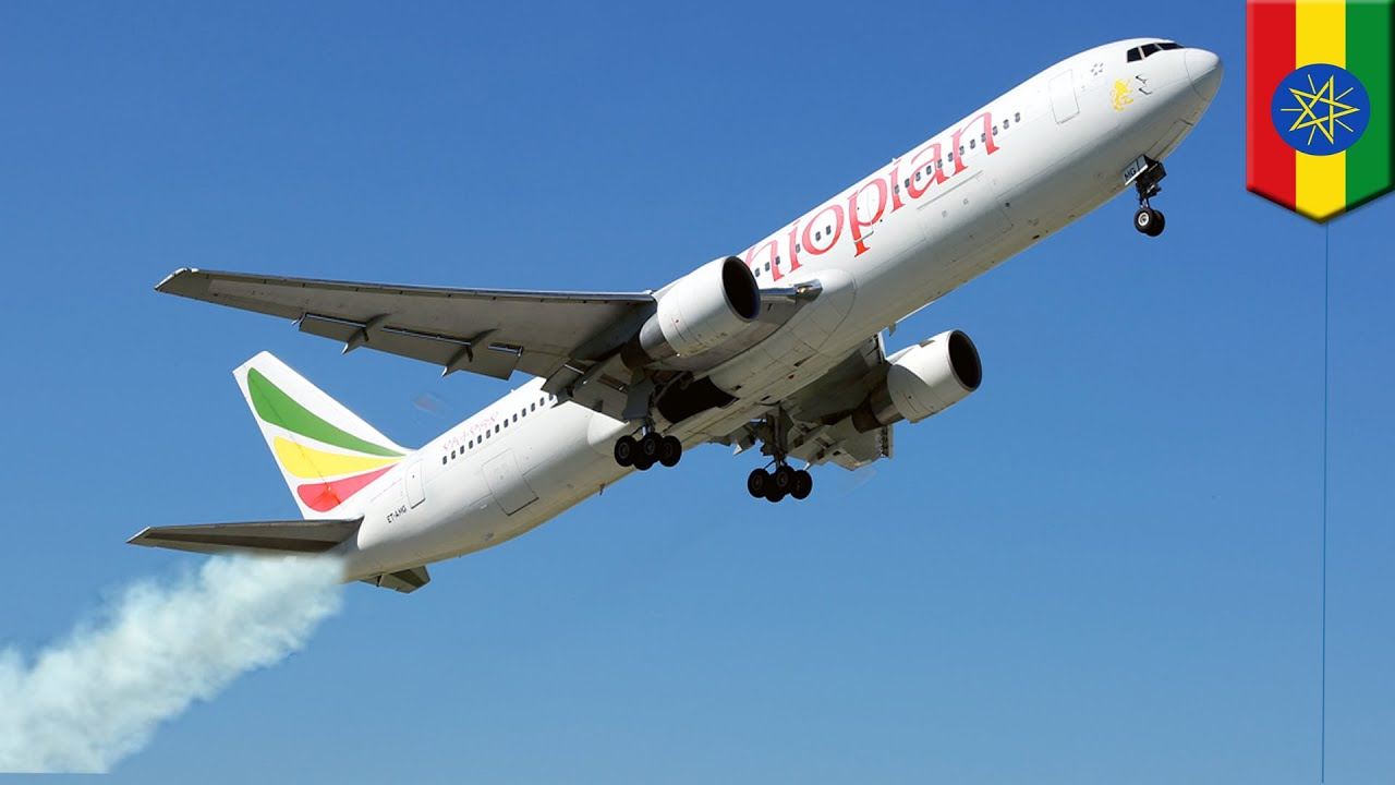 Ethiopian flight smoked, shuddered before crash - TomoNews